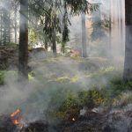 Desde hoy queda levantada la prohibición de quema de rastrojos