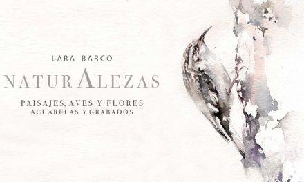 """Exposición de Lara Barco """"Naturalezas"""""""