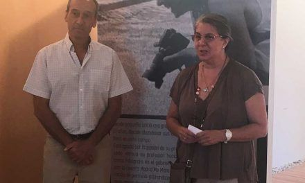"""Septiembre comienza con una nueva Exposición en las Salas del Palacio Goyeneche, """"Des-cubiertos de Arte""""."""