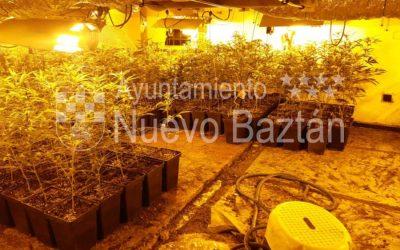 Desmantelado un punto de distribución de marihuana en Nuevo Baztán
