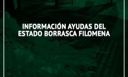 Información ayudas del Estado Borrasca Filomena